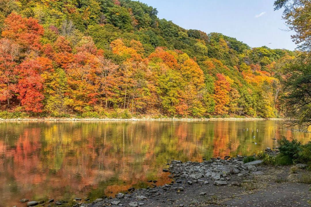 Fall on the Genesee River